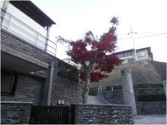 横浜市港北区のお寺